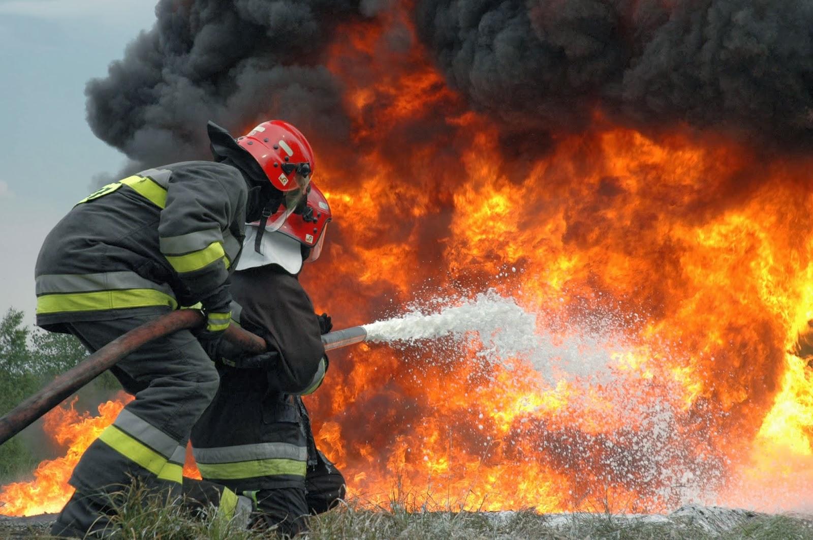 الحرائق التهمت 841 هكتارا من المساحات الغابوية سنة 2018