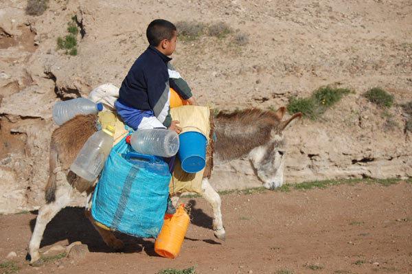 لقاء لدراسة الانعكاسات السلبية لندرة المياه