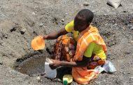 الأمم المتحدة: الغذاء الملوث يقتل 420 ألف شخص كل عام