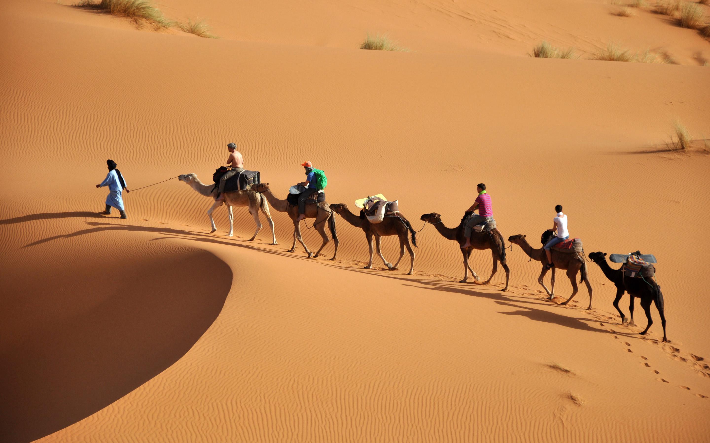 تسويق السياحة الصحراوية في ظل التنمية المستدامة