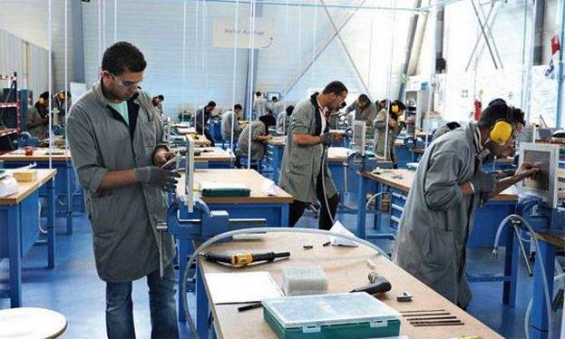 الملاءمة بين التكوين والتشغيل، التحدي المركزي لمعالجة معضلة البطالة في صفوف الشباب