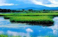 الناظور تحتضن المؤتمر الدولي الثاني حول المناطق الرطبة والتنمية المحلية بين 25 و27 أبريل