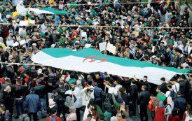 الجزائريون نزلوا إلى الشارع للجمعة التاسعة على التوالي
