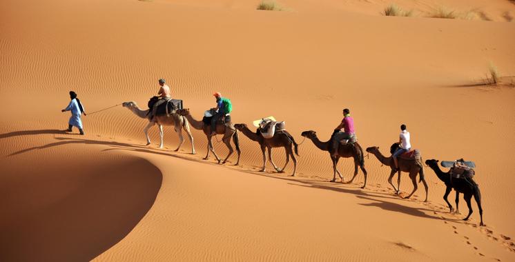 نتائج إيجابية لقطاع السياحة..