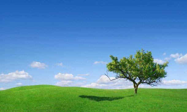 طقس مستقر مع سماء صافية الى قليلة السحب اليوم الثلاثاء