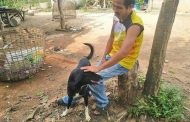 كلب ينقذ رضيعا، بعد دفنه حياً من طرف أمه..