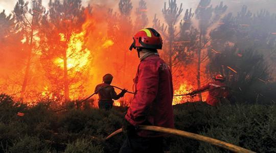حريق يأتي على حوالي 40 هكتارا