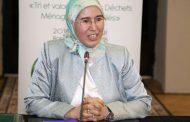 الوفي: المغرب يضع العمل المناخي في صلب سياسته الوطنية