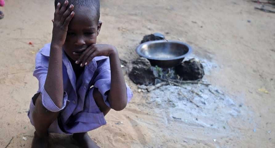 منظمات أممية تكثف جهودها المشتركة للقضاء على الجوع