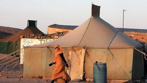 خبير: تفويض الجزائر تدبير مخيمات تندوف لجبهة البوليساريو