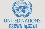 تحذير من الزيادة غير المسبوقة للدين العام في المنطقة العربية
