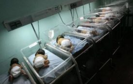 الدار البيضاء.. التوائم التسعة في صحة جيدة