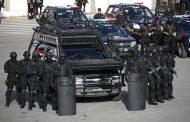 مجلس الأمن: الشرطة في خدمة عمليات حفظ السلام