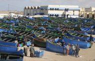 الصيد البحري.. ارتفاع قيمة المنتجات المسوقة