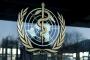 الصحة العالمية.. المغرب من بين الدول العشر الأوائل