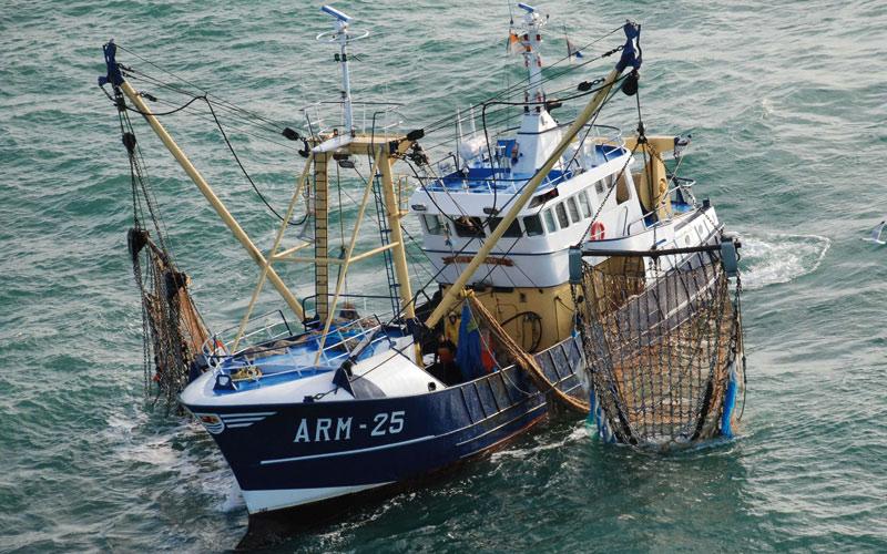 توزيع محركات لفائدة الصيادين التقليديين