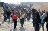الأمم المتحدة: اللجوء حق أساسي للفارين من العنف