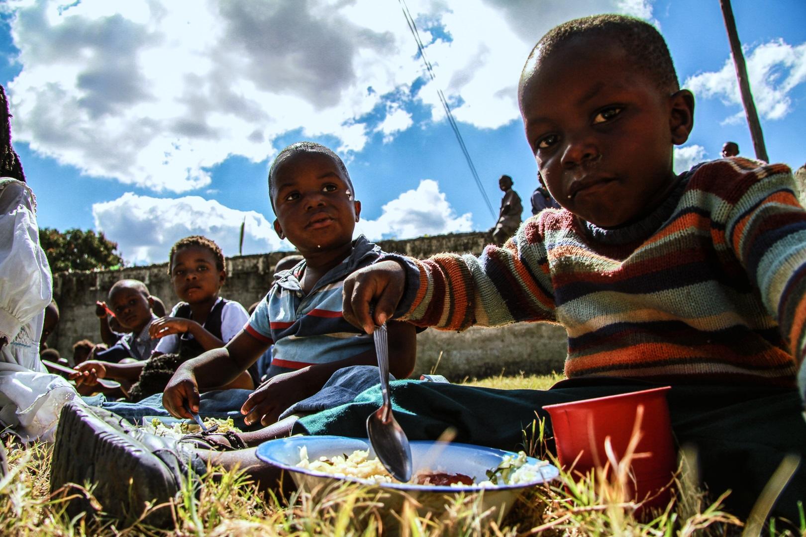 17 مليار دولار لتحسين الأمن الغذائي في إفريقيا